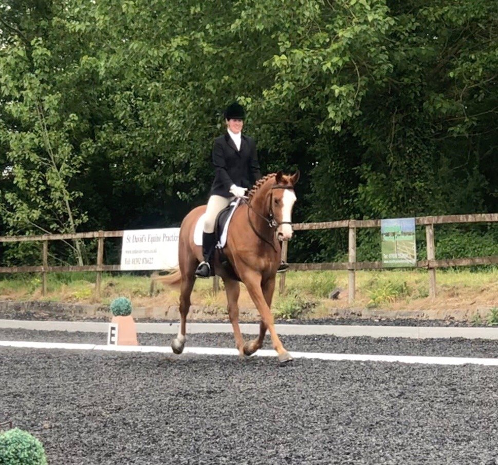 SAVE THE DATE - 15-16 May - Area Qualifiers for National Dressage Finals